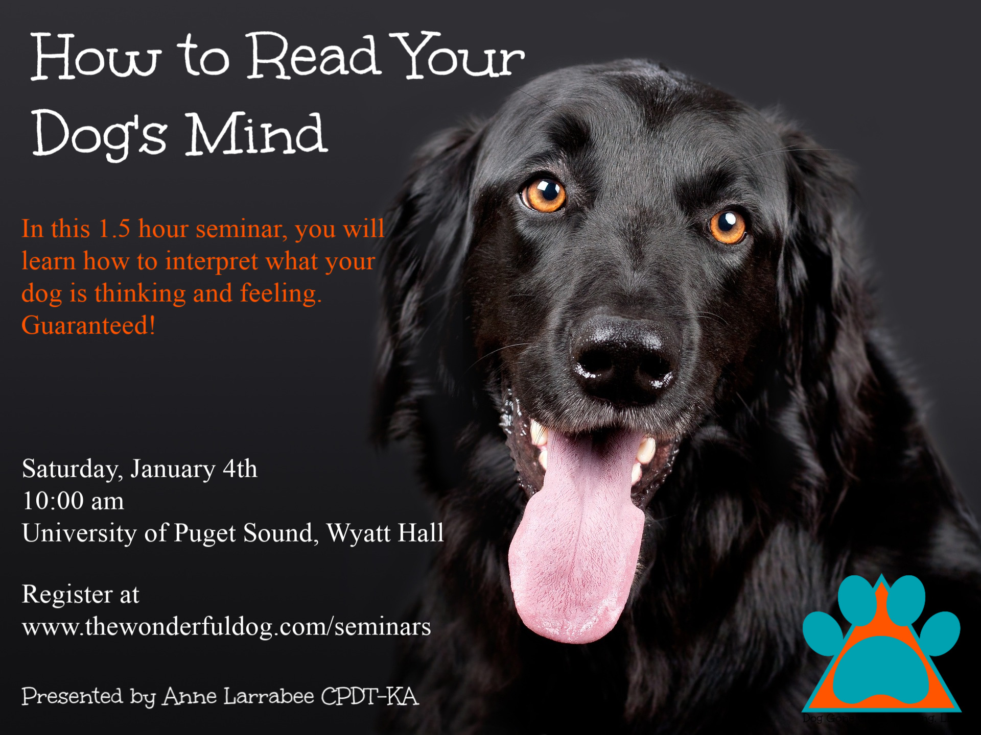 How to read your dog's mind
