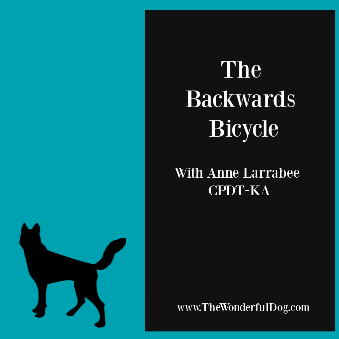 The Backwards Bicycle for Dog Training